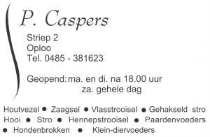 logo caspers