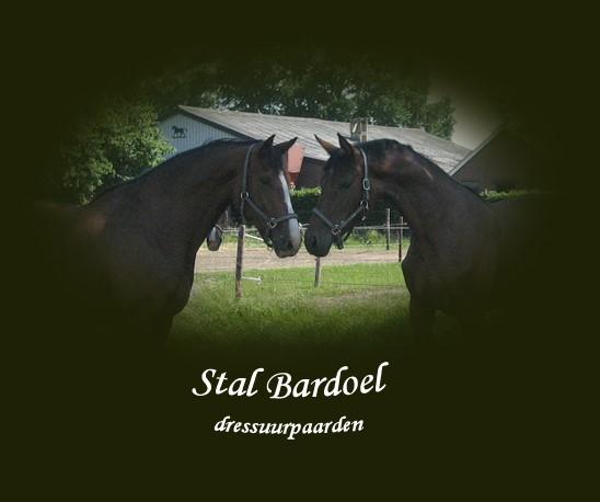 Stal Bardoel