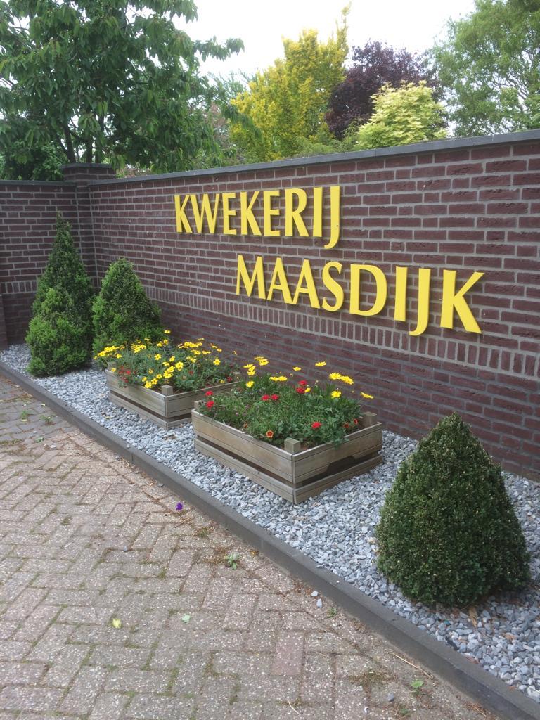 Kwekerij Maasdijk